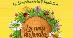 Semaineplantatio
