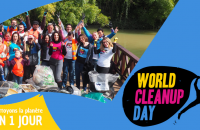 Worldcleanupday